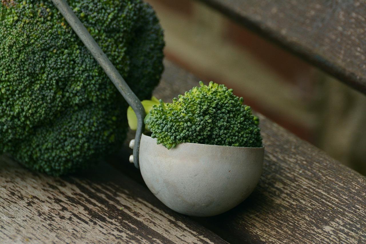 Le brocoli, un aliment indispensable en alimentation